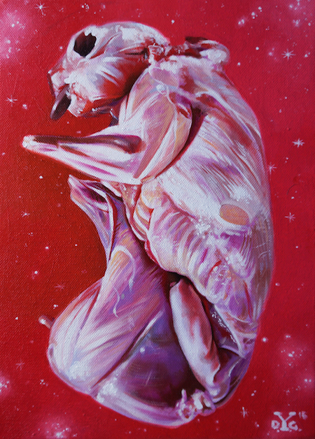 red-rabbit-olio-su-tela-33-x-24-cm-2015
