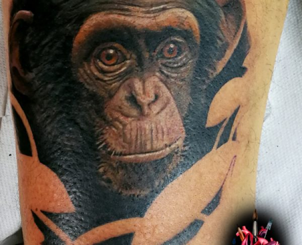 Chimp Tattoo